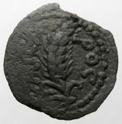 Prutah de Coponius. Espiga y palmera. Ceca Jerusalem. 3004_D