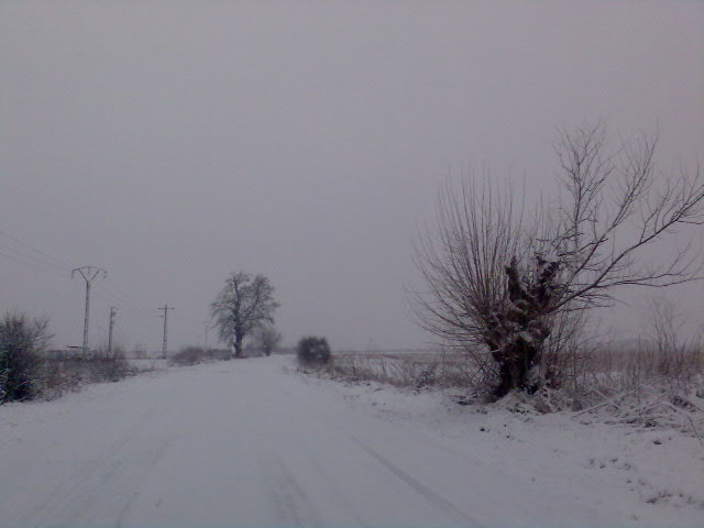 iarna ca un vis frumos Imag055