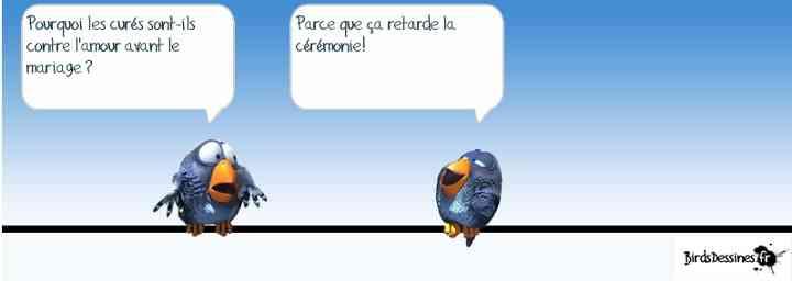Les birds - Page 6 2018-06-22-b-01