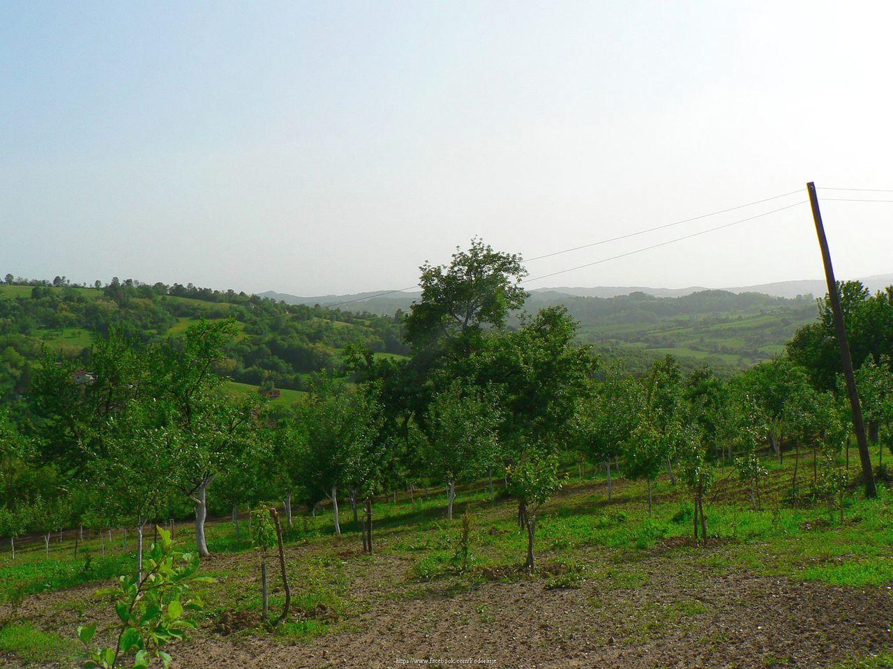 Јасеница Panorama_prema_dolini_Jasenice