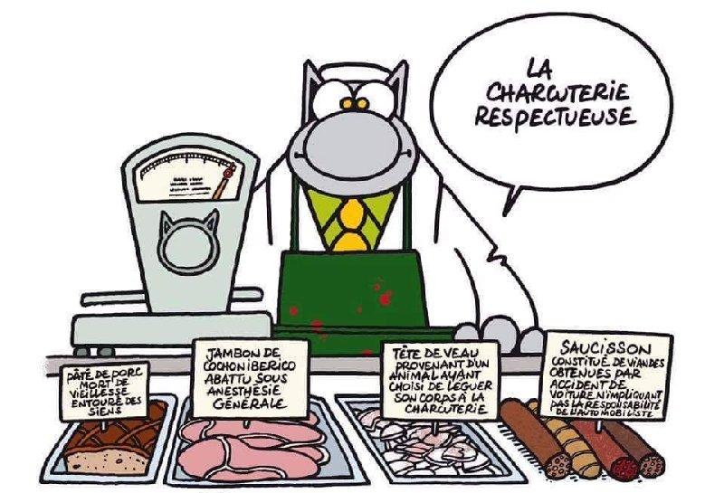 Le chat - Page 3 2018-05-17-le-chat-01