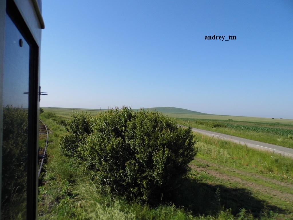 916A : Buzias - Gataia - Jamu Mare P1030497