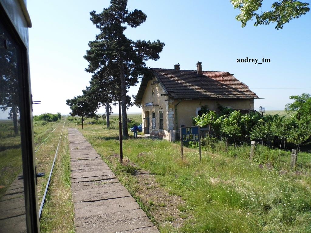 916A : Buzias - Gataia - Jamu Mare P1030525