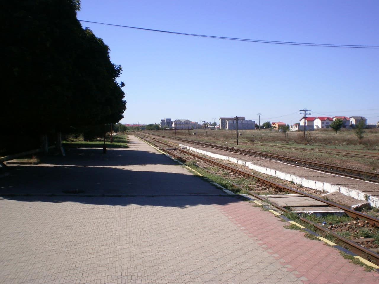 Costineşti (800) P1011749