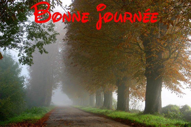 Bonjour  - Page 10 2018-08-30-bj-01