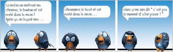 Les birds - Page 2 2018-05-10-les-birds-01