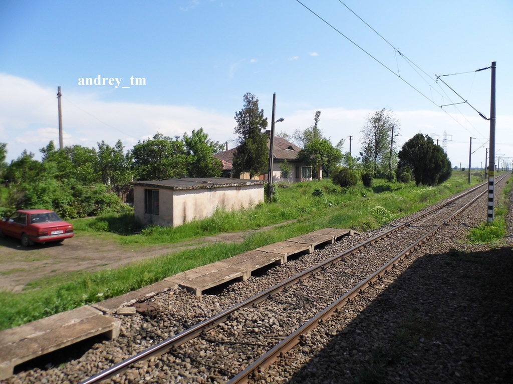 Utvinișu Nou (310) P1030096