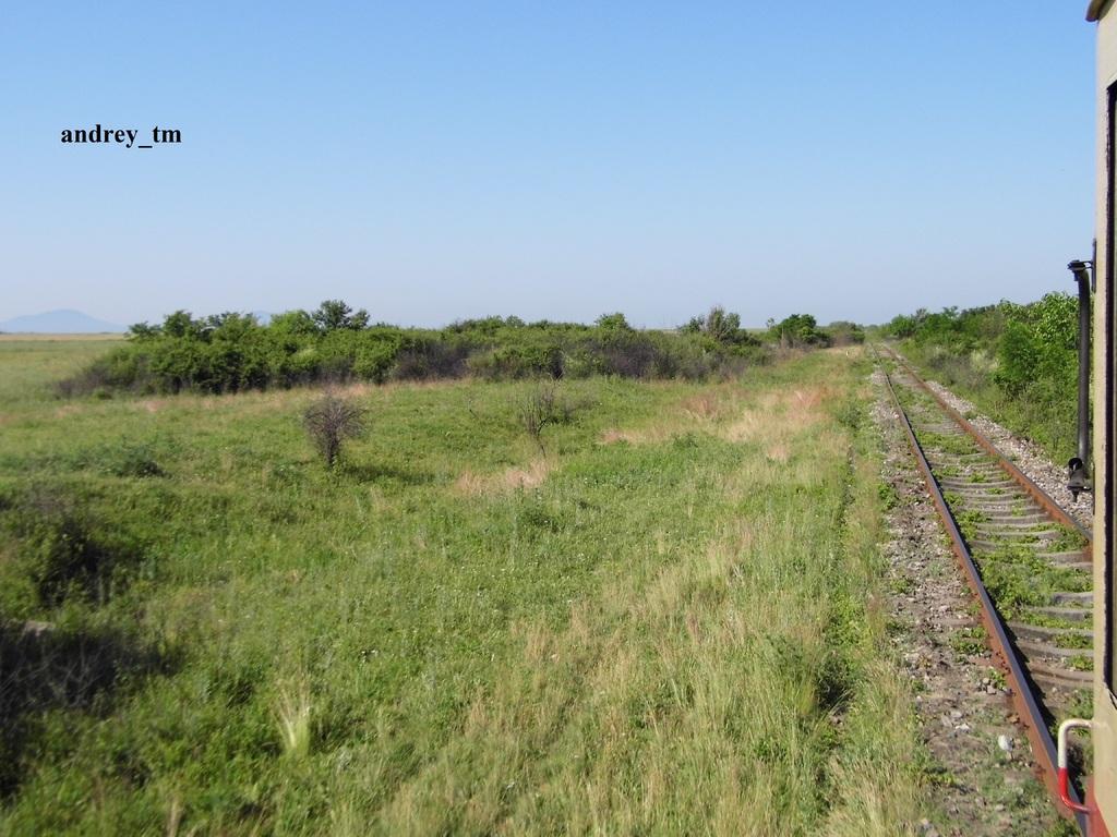 916A : Buzias - Gataia - Jamu Mare P1030538