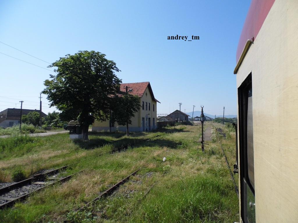 916A : Buzias - Gataia - Jamu Mare P1030620