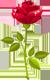 Inscripción: Control De Poderes ll 9456d6934814c2e