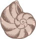 Roles para todos 13882918-_Sea-shells-drawings-_Stock-_Vector-cartoo