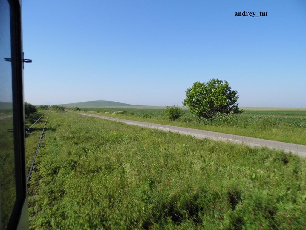 916A : Buzias - Gataia - Jamu Mare P1030493
