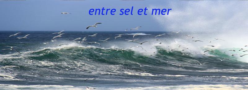 Entre sel et mer - Site d'Annie (Nanou) Entre-sel-et-mer-01