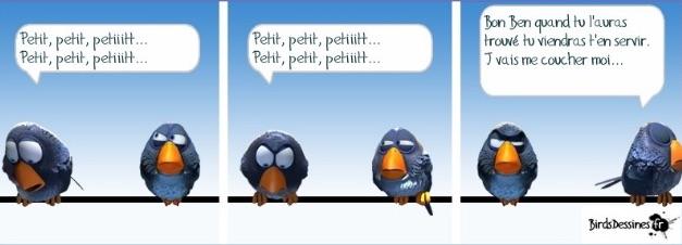 Les birds - Page 2 2018-05-12-les-birds-01