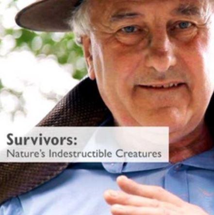 Survivors Natures Indestructible Creatures COMPLETE S01 720p