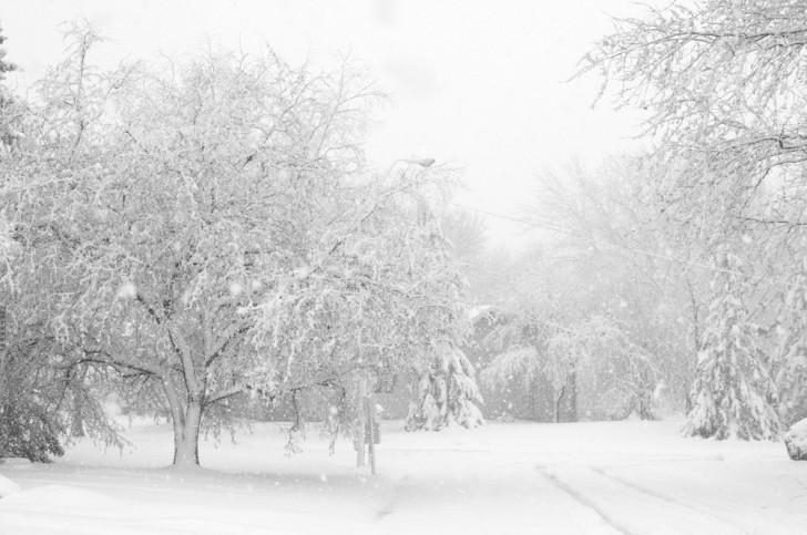 Lucien T. Devereaux - Ato III - The Winter Girl Blizzard