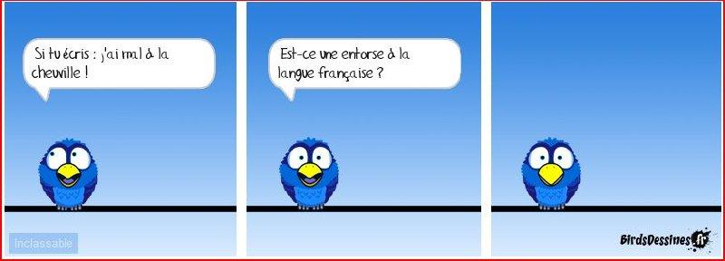 Les Birds 2018-05-19-les-birds-01