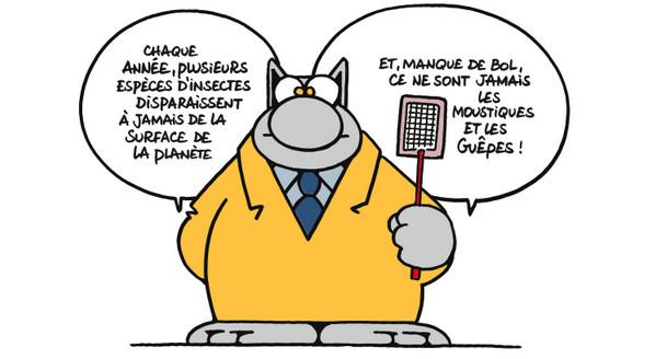 Le Chat - Page 2 2018-06-06-le-chat-01
