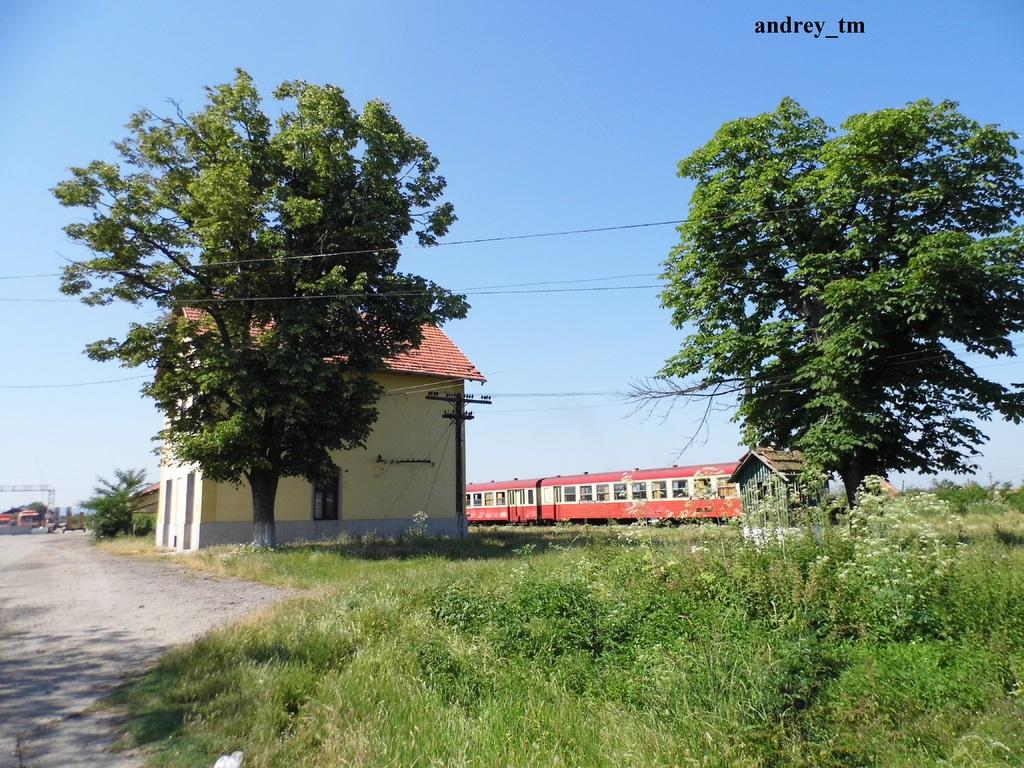 916A : Buzias - Gataia - Jamu Mare P1030635