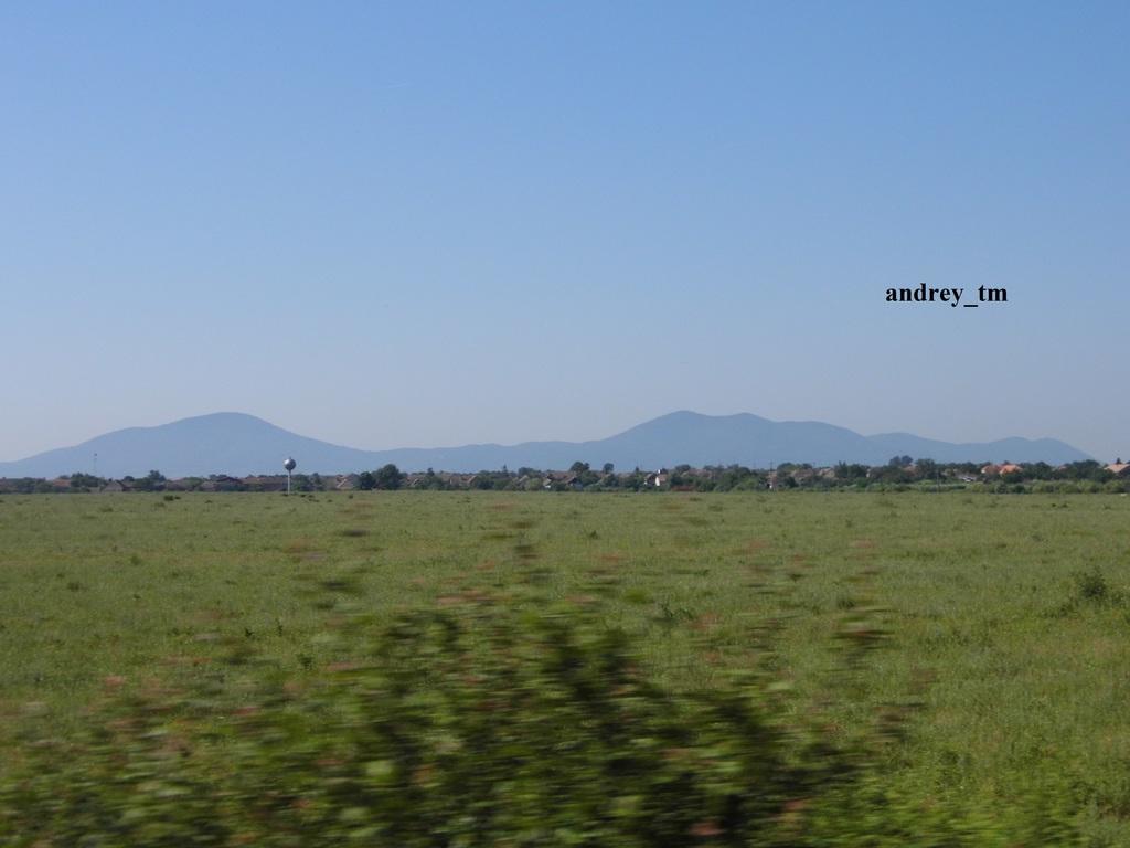916A : Buzias - Gataia - Jamu Mare P1030597