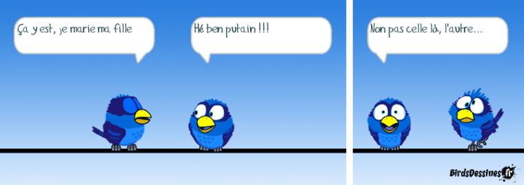 Les Birds 2018-05-06-les-birds-01