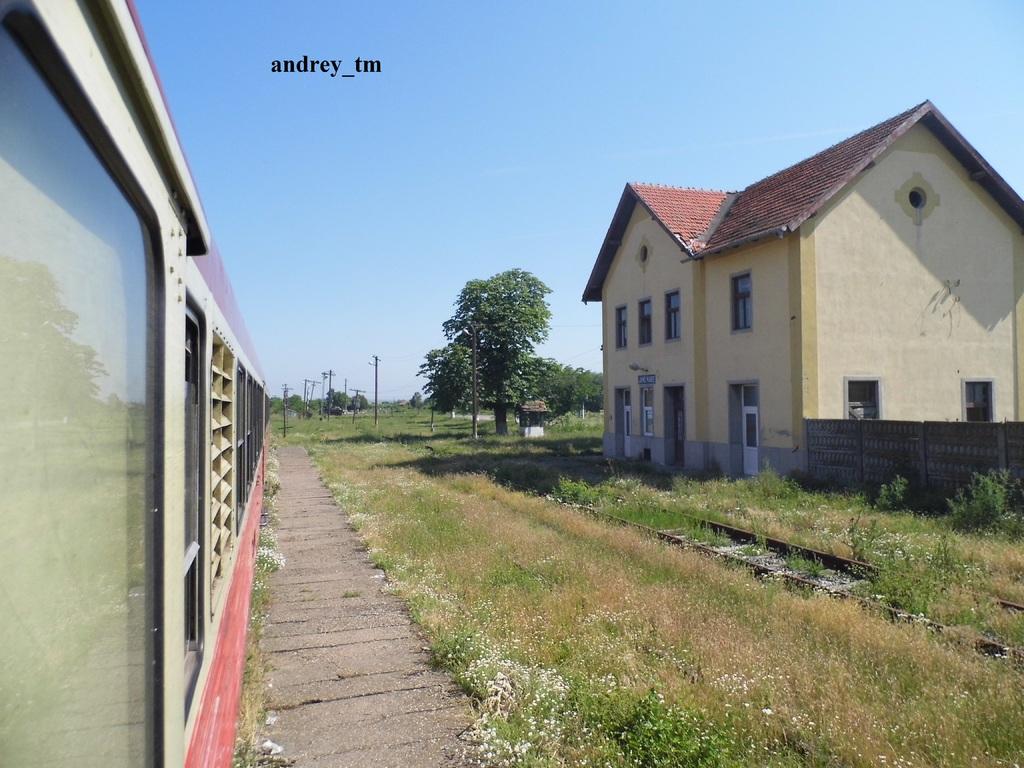 916A : Buzias - Gataia - Jamu Mare P1030624