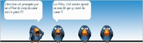 Les Birds - Page 3 2018-07-13-b-01