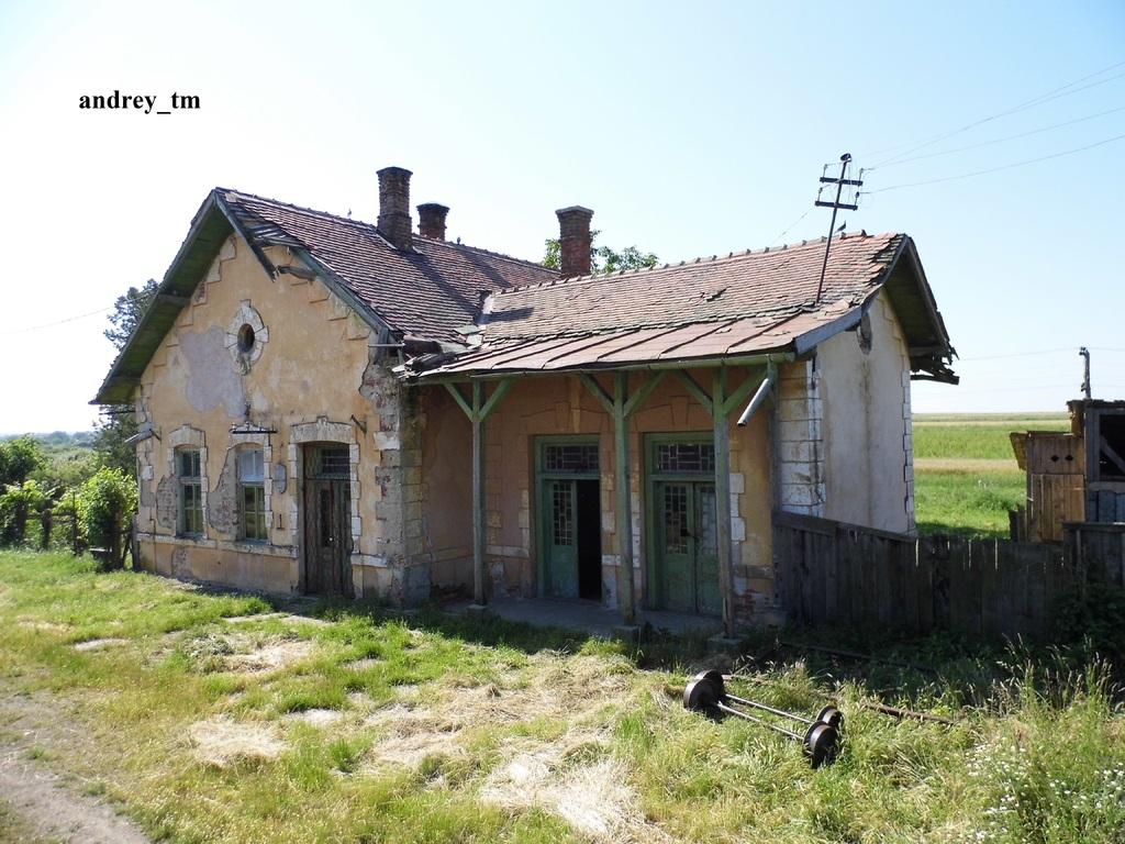 916A : Buzias - Gataia - Jamu Mare P1030579