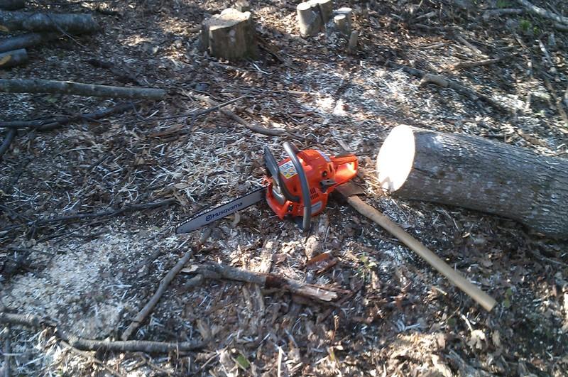 Izrada ogrijevnog drva - Page 2 IMAG0771