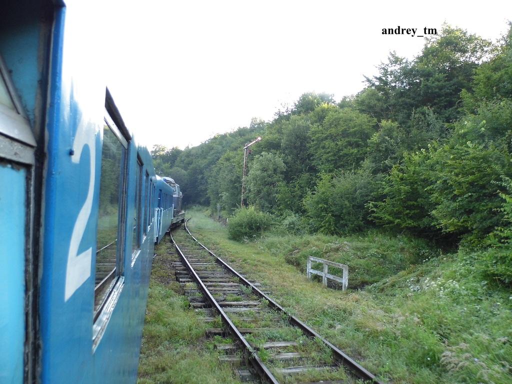 Lișava (925) P1040914