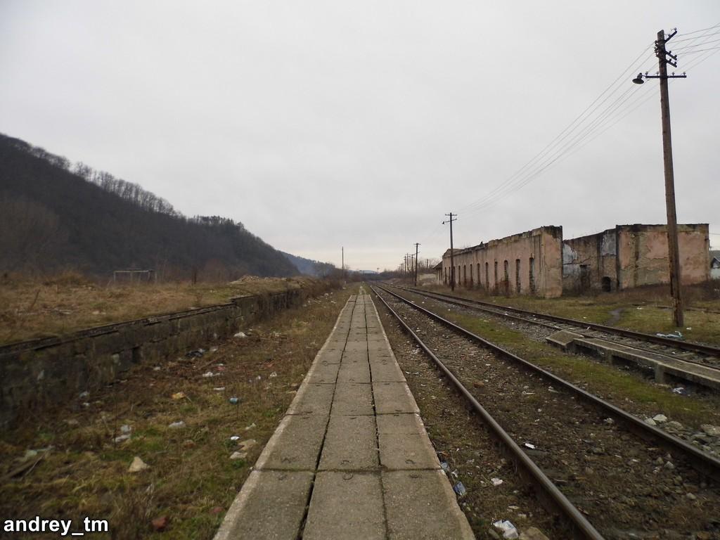 Vașcău (315) P1110162