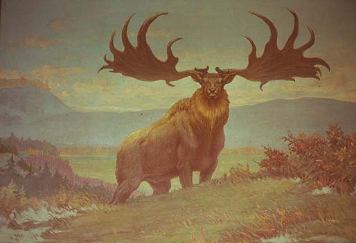 Eleanor A. Patterson - Ato IX - The Dawn Elk
