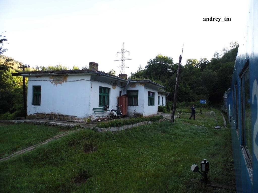 Lișava (925) P1040916