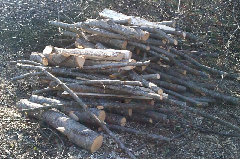 Izrada ogrijevnog drva - Page 2 IMAG0772