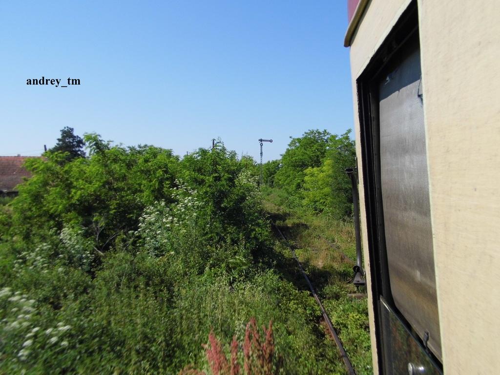 916A : Buzias - Gataia - Jamu Mare P1030609