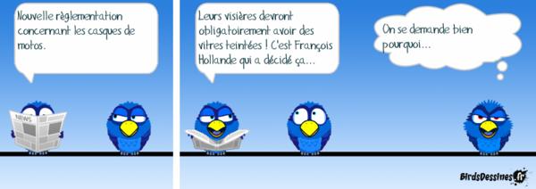 Les Birds - Page 2 2018-06-09-birds-01