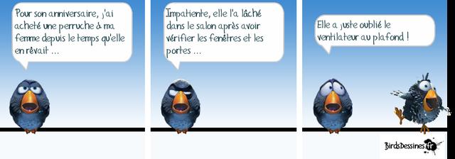 Les birds - Page 4 2018-06-02-les-birds-01