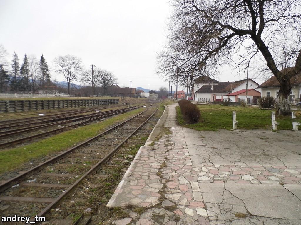 Vașcău (315) P1110177