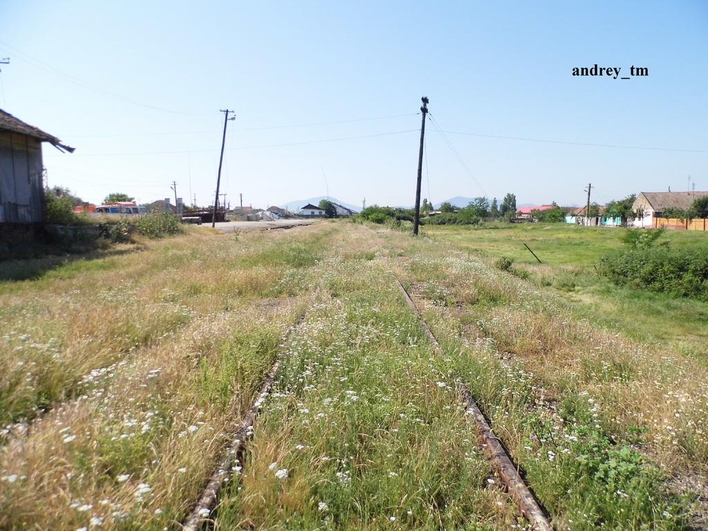 916A : Buzias - Gataia - Jamu Mare P1030627
