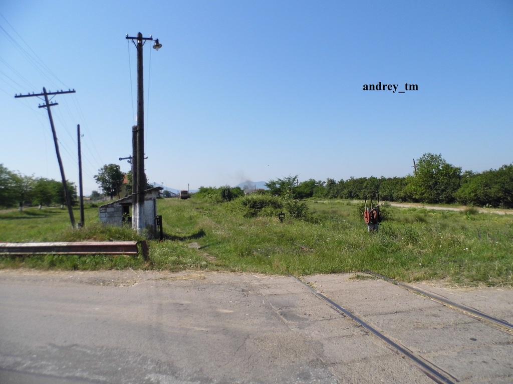 916A : Buzias - Gataia - Jamu Mare P1030637