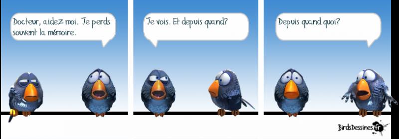 Les birds - Page 4 2018-06-04-birds-01