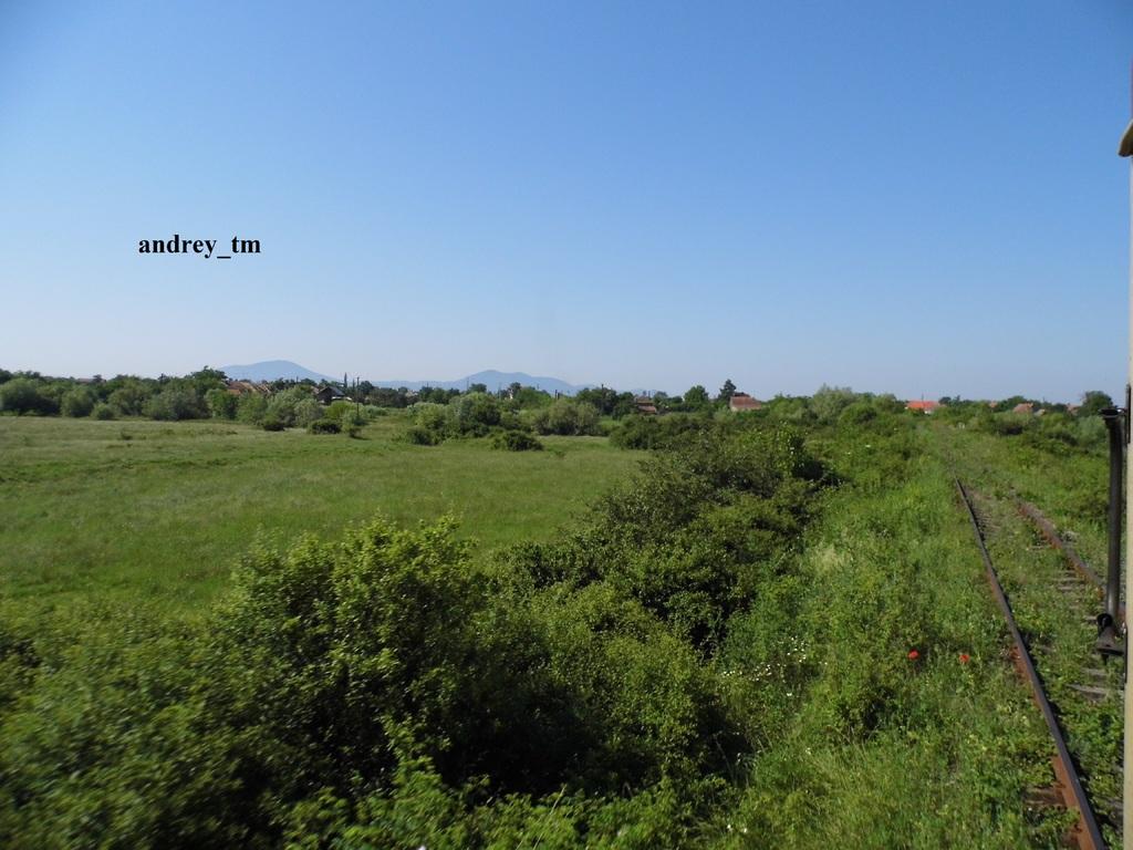 916A : Buzias - Gataia - Jamu Mare P1030606