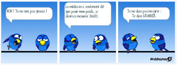 Les Birds 2018-05-17-les-birds-01