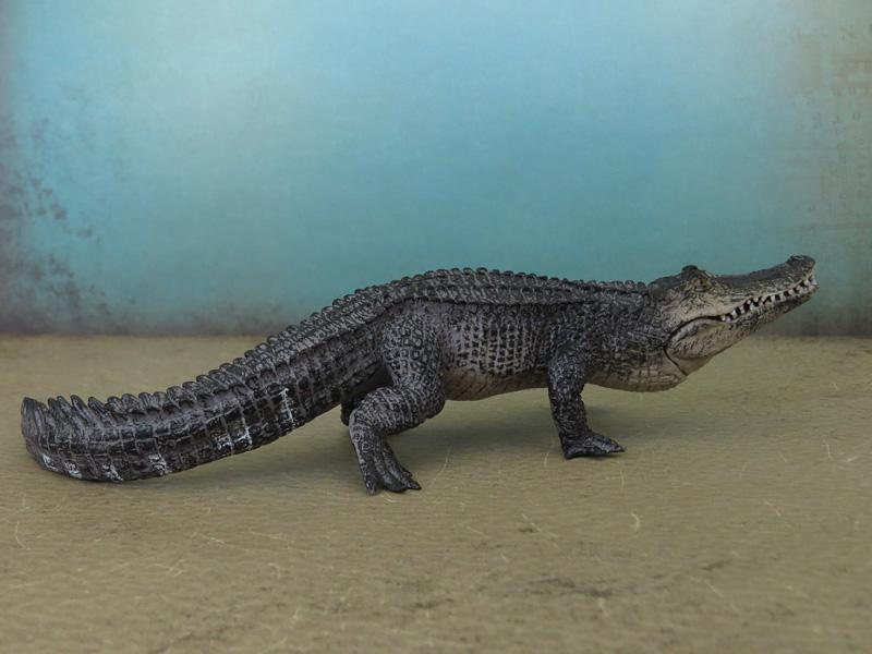 Mojö Alligator- walkaround/comparison by A.R.Garcia IMG_5902ed