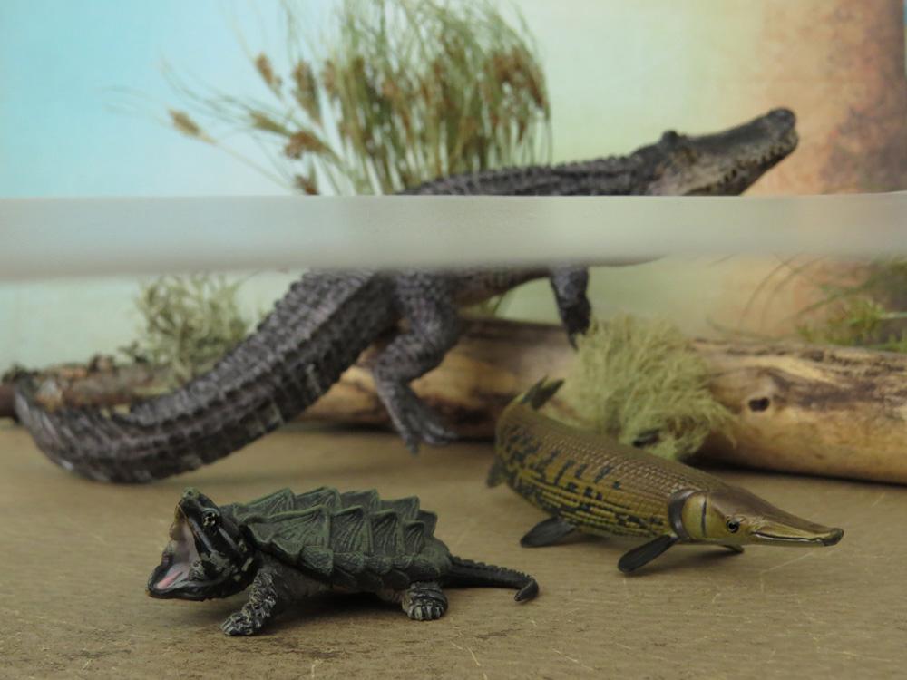 Mojö Alligator- walkaround/comparison by A.R.Garcia IMG_5930ed1