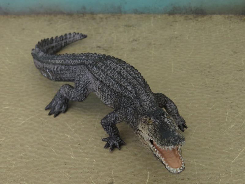 Mojö Alligator- walkaround/comparison by A.R.Garcia IMG_5901ed