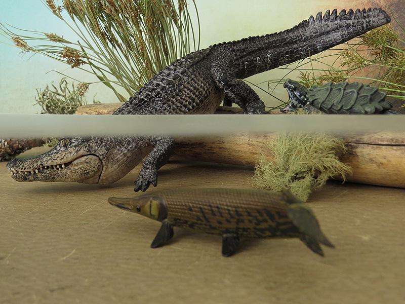 Mojö Alligator- walkaround/comparison by A.R.Garcia IMG_5942ed