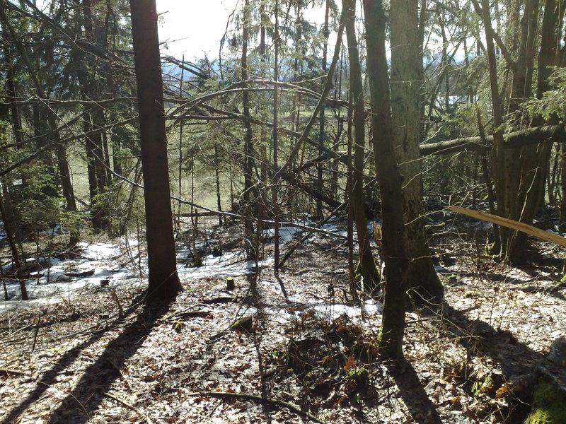 Izrada ogrijevnog drva 14022014712