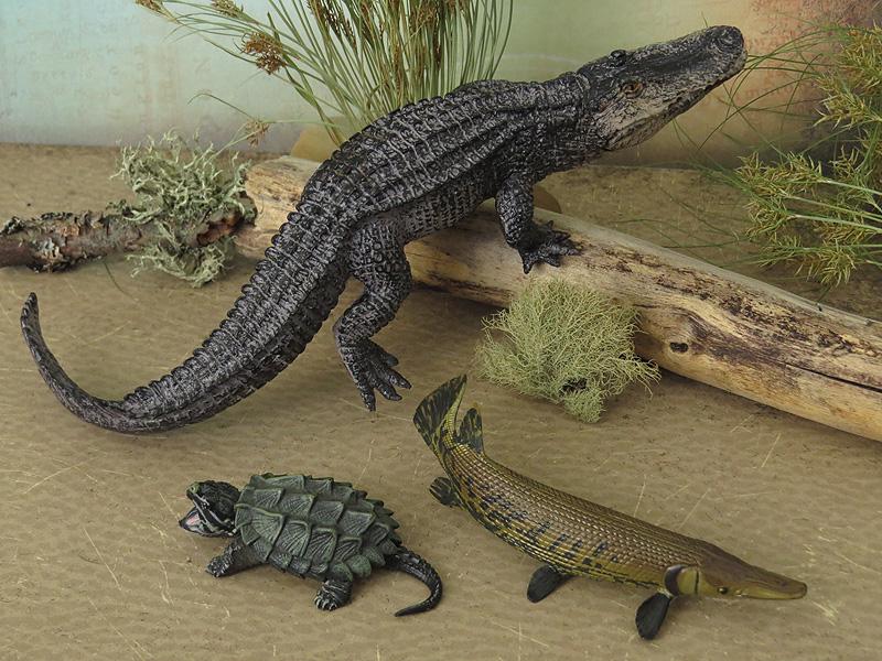 Mojö Alligator- walkaround/comparison by A.R.Garcia IMG_5929ed