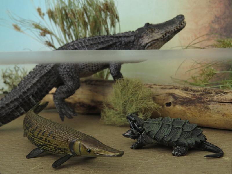 Mojö Alligator- walkaround/comparison by A.R.Garcia IMG_5924ed